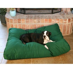 Green Rectangle Dog Bed