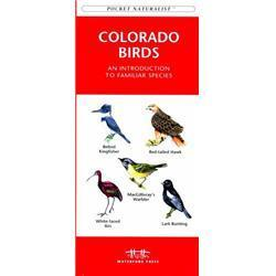 Colorado Birds Book
