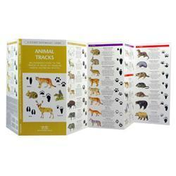 Animal Tracks Book