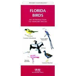 Florida Birds Book