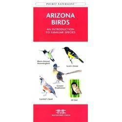 Arizona Birds Book