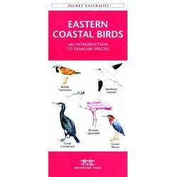 Eastern Coastal Birds Book