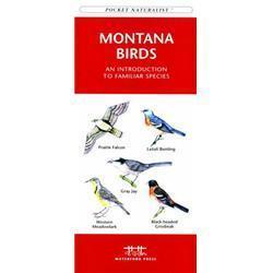 Montana Birds Book