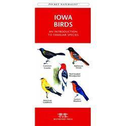 Iowa Birds Book