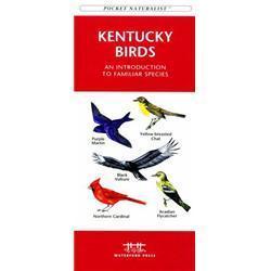 Kentucky Birds Book