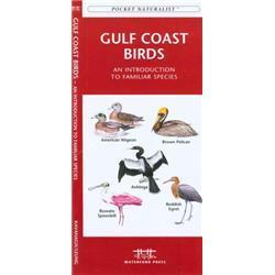 Gulf Coast Birds Book