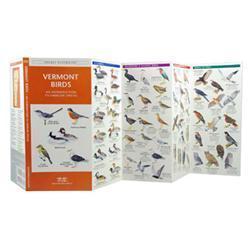 Vermont Birds Book
