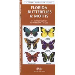 Florida Butterflies amp; Moths Book
