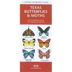 Texas Butterflies amp; Moths Book