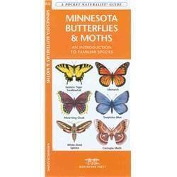 Minnesota Butterflies amp; Moths Book