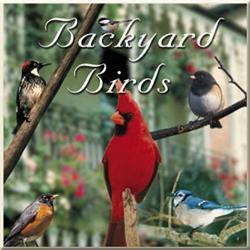 Naturescapes Music Backyard Birds CD
