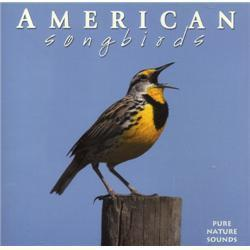 Naturescapes Music American Songbirds CD
