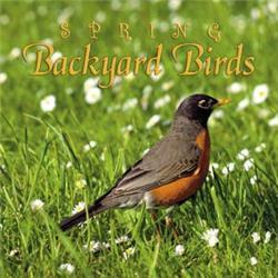 Naturescapes Music Spring Backyard Birds CD