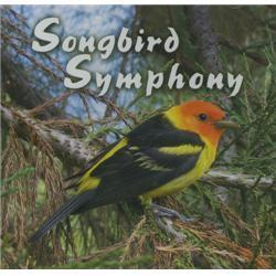 Naturescapes Music Songbird Symphony