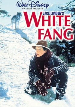 White Fang (DVD)