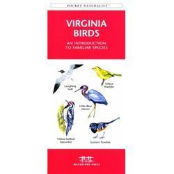 Virginia Birds Book