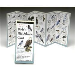 Birds Mid-Atlantic Coast Book