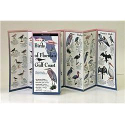 Birds of Floridaapos;s Gulf Coast Book