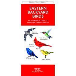 Eastern Backyard Birds Book
