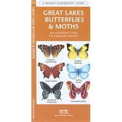 Great Lakes Butterflies Moths Book