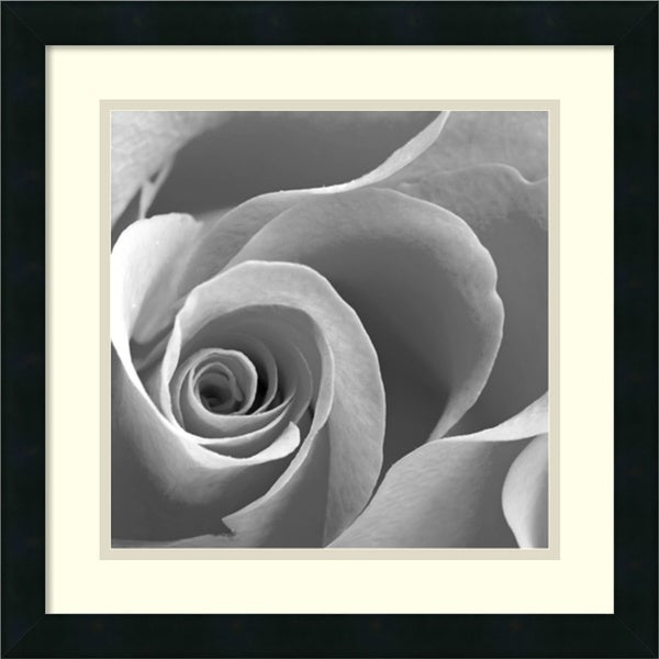 Rose Spiral II' 18 x 18-inch Framed Art Print