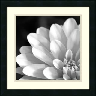 Radiating Petals' 18 x 18-inch Framed Art Print