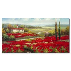 Rio 'Field of Poppies' Canvas Art