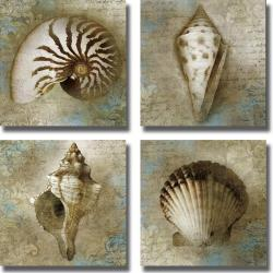 Keith Mallett 'Seaside Shells' 4-piece Canvas Art Set