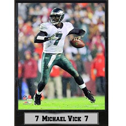 Philadelphia Eagles Commemorative Michael Vick Stat Photo Plaque