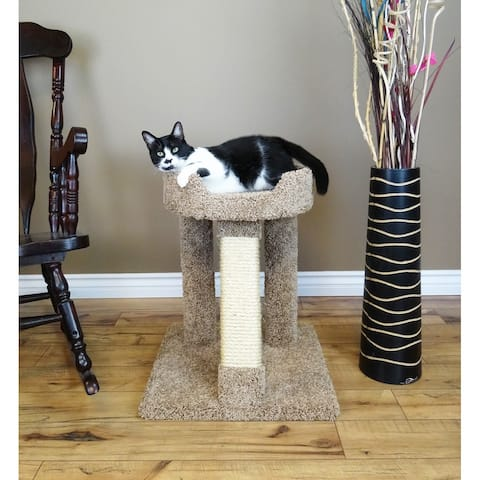 Grey, Sisal Rope Cat Furniture | Find Great Cat Supplies
