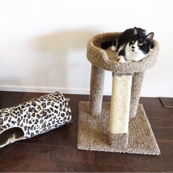 New Cat Condos 24 Inch Elevated Cat Bed Tree Overstock 6151047