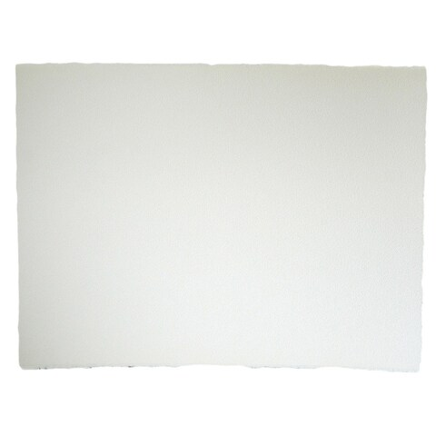 Arches 22-inch x 30-inch Cold Press Watercolor Paper Sheet