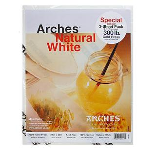 Arches 22-inch x 30-inch Cold Press Watercolor Paper (3 Sheets)