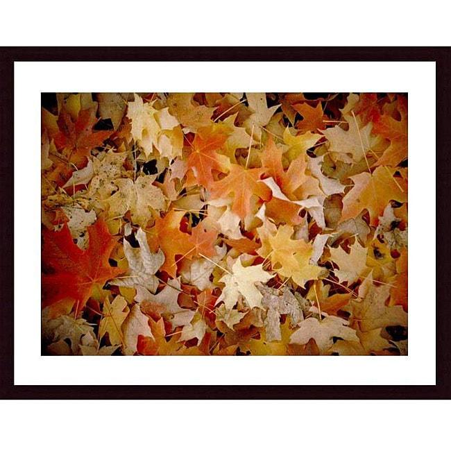 John K. Nakata 'Maple Leaf Carpet' Framed Art Print