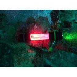 Lazerbrite White and White Single-mode Six-inch Flashlight/Chem Light - Thumbnail 1