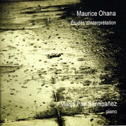 Maria Paz Santibanez - Etudes D'Interpretation