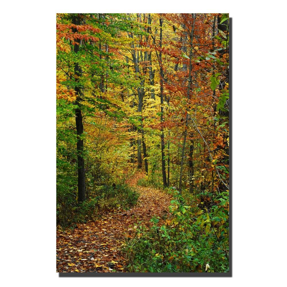Kurt Shaffer \'Fall Pathway\' Canvas Art - Free Shipping Today ...