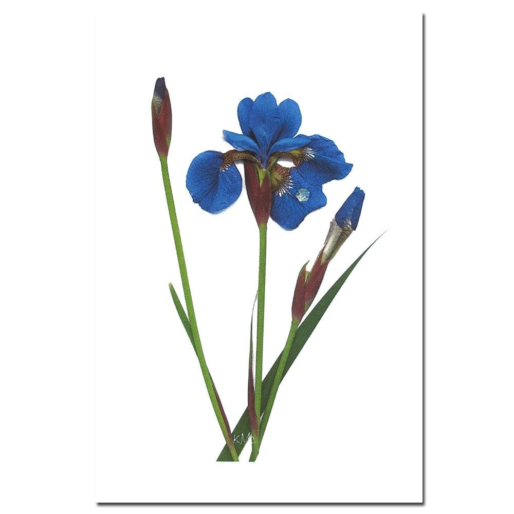 Kathie McCurdy 'Blue Beauty' Canvas Art