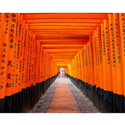 "Stewart Parr ""Japanese Fushimi Inari Shrine"" Small Unframed Photo Print - Thumbnail 0"