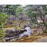 "Stewart Parr ""Japan - City Gardens"" Unframed Photo Print"