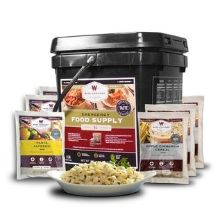Link to Wise Company Grab N' Go 84-serving Breakfast/ Entree Long Term Food Bucket - Multi Similar Items in Long-Term Food Supplies