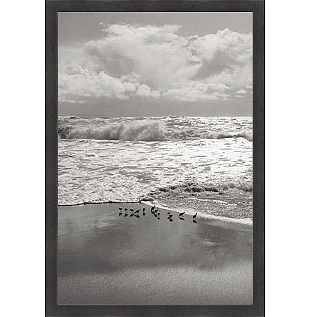 Marty Knapp 'Shorebirds, Point Reyes' Framed Print Art - Thumbnail 0