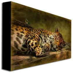 Lois Bryan 'Wake Up Sleepyhead' Gallery-Wrapped Canvas Art