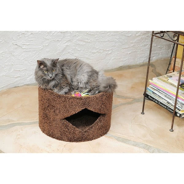New Cat Condos Cat House