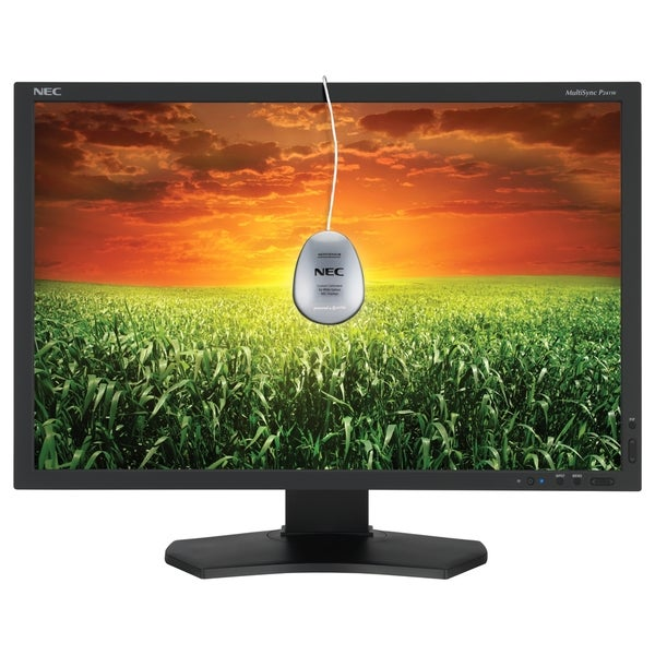 "NEC Display MultiSync P241W-BK-SV 24"" CCFL LCD Monitor - 16:10 - 8 ms"
