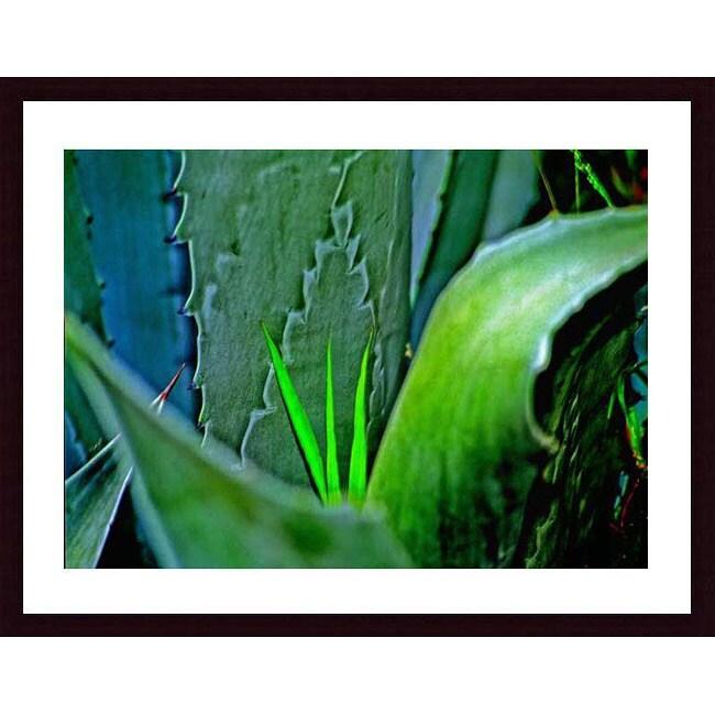 John K. Nakata 'Grass & Cactus' Wood Framed Art Print