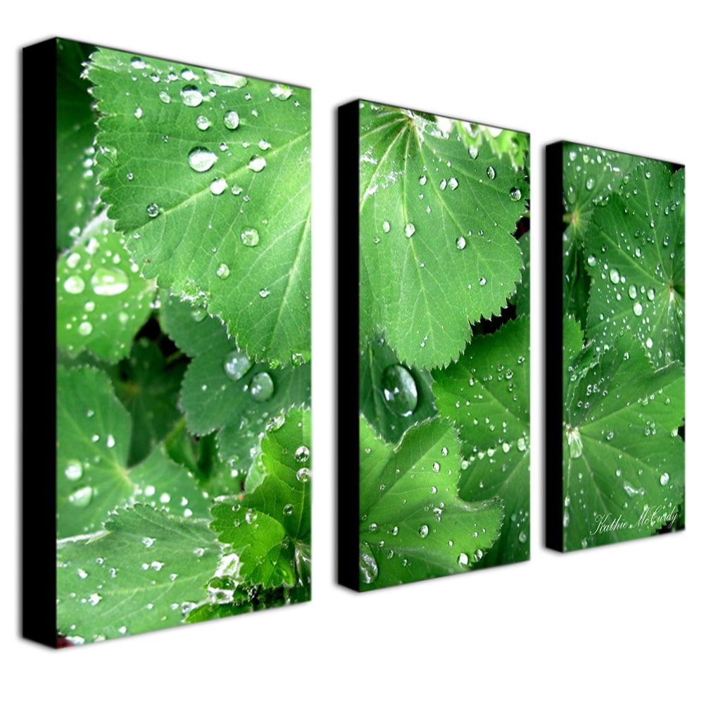 Kathie McCurdy 'Water Droplets' Canvas Art Set