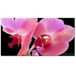 Kathie McCurdy 'Orchid' Large Canvas Art