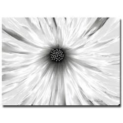 Kathie McCurdy 'White Garden' Floral Canvas Art