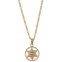 14k Yellow Gold Ruby Star of David Medallion Necklace